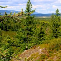 Восточный склон Полярного Урала. Ямал :: Tata Wolf