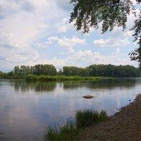 Летняя река :: Наталия Григорьева