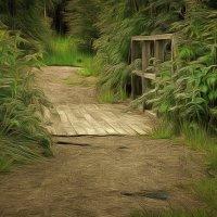 По тропинке в лес густой..... :: Tatiana Markova