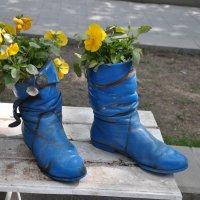 вазочки с цветами :: Августа