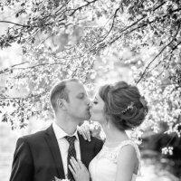 Весенний поцелуй :: Оля Ветрова