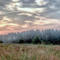 утро.дымка тумана. :: юрий иванов