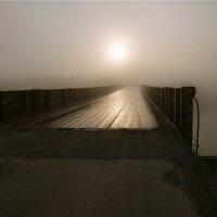 Скоро туман рассеется... :: cfysx