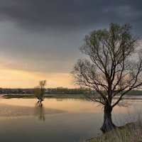 Весеннее половодье :: Виктор Четошников