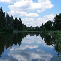 Лесное озеро :: Виктория Нефедова