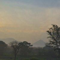 Утро над рисовыми полями. Цейлон. The morning of rice fields. Ceylon. :: Юрий
