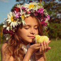 Лето- маленькая жизнь) :: Violafoto5