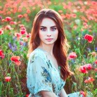 в маковом поле :: Алёна Найдёнова