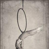 aerial hoop :: Gera Evtukhova
