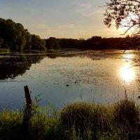 Теплый летний вечер... :: Ольга Русанова (olg-rusanowa2010)