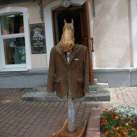 Кто-кто? Конь в пальто! Ну, почти...) :: Галина Бобкина