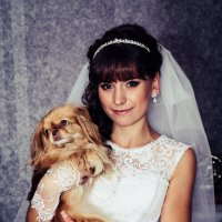 Девушка с собачкой :: Ксения Антосяк