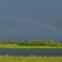 После дождика :: Вера Андреева