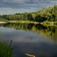 Река Чумыш :: Наталья ***