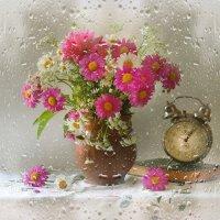 Июльский дождь... :: Валентина Колова