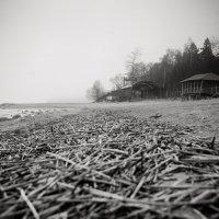 Туман на заливе... :: Андрей Король