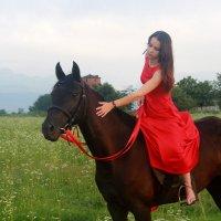 На коне :: Полина Верещагина