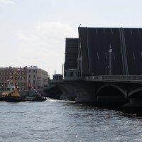 Развод Благовещенского моста :: tipchik