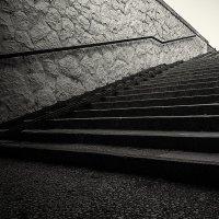 Каким бы ни был твой путь - не останавливайся. :: Виталий Павлов