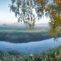 Утро у туманной реки 2 :: Николай Андреев