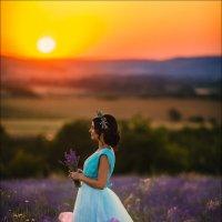 Волшебство лавандового рая... :: Алексей Латыш