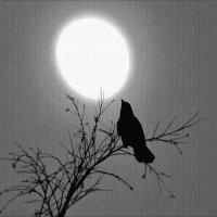 Мечтания при луне :: Валентина *