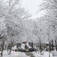 Городская среда :: Тамара Рылова