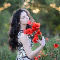 Маки :: Инна Кравченко