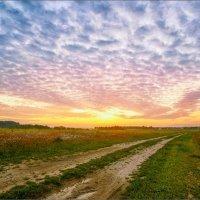 Золотое время заката... :: Александр Никитинский