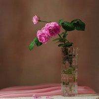Розовый шиповник :: Вера