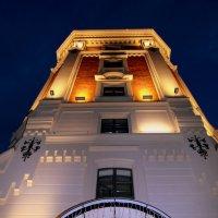 Певческая водонапорная башня :: Ирина Фирсова