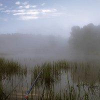 Немного о рыбалке. :: cfysx