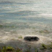 Шёпот воды :: Виталий