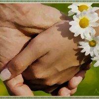 День семьи, любви и верности :: Лидия (naum.lidiya)
