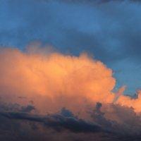 Вечернее небо Новосибирская область :: Альбина Козина