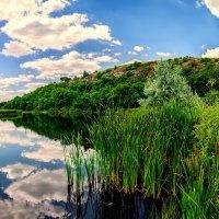 Скалы над рекой :: Юрий Шапошник