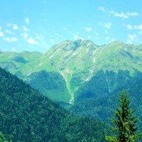 Сердце Абхазии :: Yuliana Nebel
