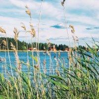 Озеро :: Геннадий Клевцов