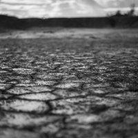 Засуха :: Денис Храменков