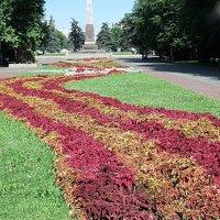 цветочное обрамление возле памятника :: МИХАИЛ КАТАРЖИН
