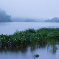 Утренний туман над Усой :: Игорь
