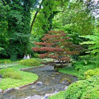 Японский садик :: Galina Dzubina