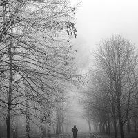 Туман :: Ксения ...