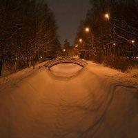 Зимний парк :: Aleksandr Shishin