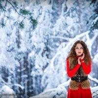 Зимняя сказка :: Анна