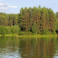 лесное озеро :: Виктор _
