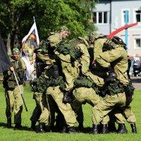 ...военная разведка ... :: Дмитрий Иншин