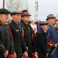 Ветераны... :: Александр Широнин