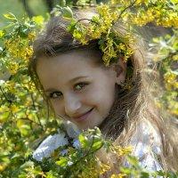 Соня. :: Марина Соколова