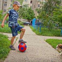 Мячик любят все. :: Надежда Ивашкина